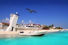 The 5 Most Beautiful Beaches in Cancun Puerto Morelos, Cozumel, Riviera Maya, Secrets Silversands Riviera Cancun, Stock Image, Quintana Roo, Most Beautiful Beaches, Beautiful Places, Mexico Travel