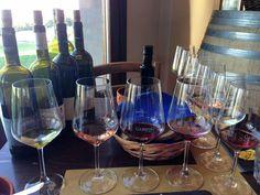 Wine tasting at Gambino Vini #wine #winery #gambinovini #sicilian #sicilianwine vino winetasting redwine  #vino #wine #etna #winelover #instasicily #igsicilia #vineyard #sicily #winery #vigneto #winerytour #gambinovini #winetasting #winetourism #vinery #cellar #grapewines #whatsicilyis #igcatania #igsicilia #igsicilia #winemakers #ilovewine #wineoclock #grapevines  Wine tasting at Gambino Vini wine winery gambinovini sicilian sicilianwine vino winetasting redwineWine tasting at Gambino Vini…