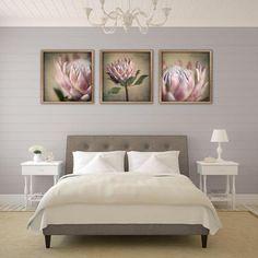 Protea prints in Kiaat box frames by Natascha van Niekerk Fine Art Photography Decorating Your Home, Interior Decorating, Interior Design, Bedroom Themes, Bedroom Decor, Bedroom Ideas, Protea Art, Office Canvas, Art Prints For Home