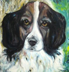 'Dog' close up by Amanda Wright