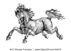 Google Image Result for http://images.clipartof.com/small/34270-Clipart-Illustration-Of-A-Black-And-White-Pen-And-Ink-Drawing-Of-A-Muscular-Victorian-Horse-Running-To-The-Left.jpg