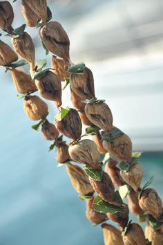 Chorwacja - suszone figi / dried figs, Croatia