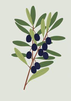 - - NEW - - Plants - - - - Sarah Abbott - - -