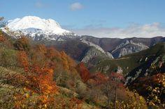 Parque Natural de Redes. Asturias, Spain