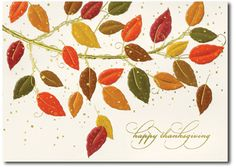 Fall Thanksgiving Cards by Birchcraft Studios!  15% Off!  Mention Code:  fall2012.  Discount will be reflected on invoice I send.  FREE Shipping!