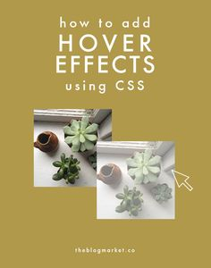 Add hover effects to your blog using CSS! via The Blog Market