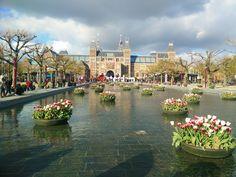 Tulpen in Amsterdam, vor dem Reichsmuseum