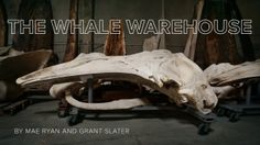 Whale Warehouse - Los Angeles, CA
