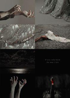Swan Lake 2/2