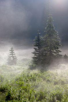 Fog and Sun (by AlphaTangoBravo / Adam Baker)