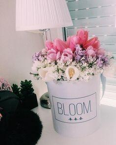 Tulip flowerbox, Flowerbox, cvijece u kutiji