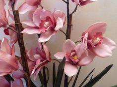 Jak si z obyčejné orchideje z obchodu vypěstovat takovou to nádheru? Stačí Vám k tomu udělat tento trik! The Incredibles, Garden, Flowers, Plants, Bouquets, Silk, Garten, Bouquet, Lawn And Garden