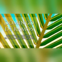 Feliz Domingo de Ramos!  #sunday #happy #byou #becomplete
