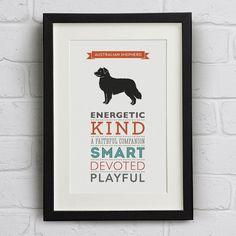 Australian Shepherd Dog Breed Traits Print - Great gift for Australian Shepherd lovers! on Etsy, $24.35 CAD