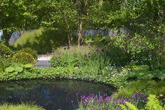 Charlotte Rowe's No Man's Land garden Chelsea Flower Show 2014 Lush Garden, Garden Pool, Water Garden, Pond Water Features, Garden Features, Chelsea Garden, Garden Waterfall, Cottage Garden Design, Chelsea Flower Show
