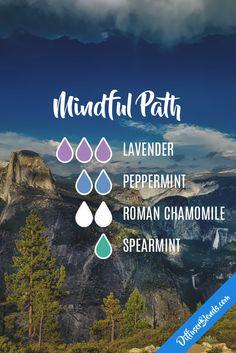 Mindful Path