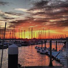 Charleston Harbor Resrt/Marina in Mt. Pleasant, SC