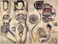 Fernando Vicente's Anatomical Art