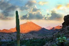 Picture of the Sunrise in Quartzsite, Arizona