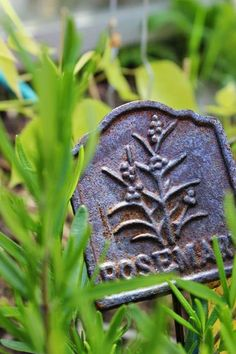 Rosemary and a cast iron sign