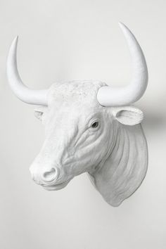 Interior Illusions Bull Head Taxidermy. This mesmerizing bull head taxidermy is sure to give an altogether different look to your home. Made of quality materials this taxidermy will last for long and easy to maintain. Animal friendly! This Taxidermy mounts to any surface in minutes. Add that punch of 3D to your walls with this wall hanging. This taxidermy looks exclusive and shall add touch of creativity to your room space.