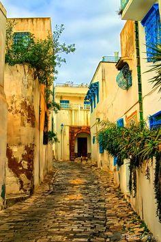 Charming Tunisian Street