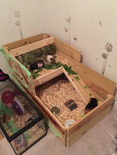 Indoor Guinea Pig Cage. Custom built for the boys!! Cage is 4'x2' with a 2'x2' loft. Home to Chocolate Chip, Midnight and Pixie (thought he was a girl and decided we still loved the name) ... ;)