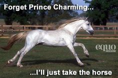 Forget Prince Charming.. I will just take the horse! ❤️