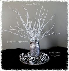 Decorative White Birch Branches/Iced Frosted Branches/Winter Wedding And Home Decor/12-18 Inches 25 PCS./Shipping Included