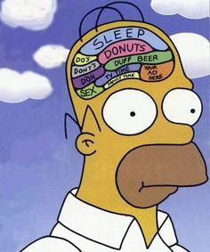 É verdade que o ser humano só usa 10% do cérebro?