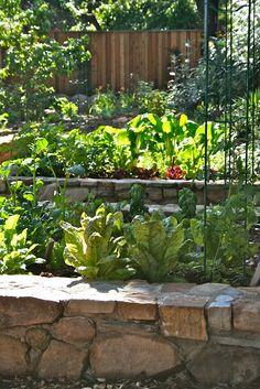 Rock around raised bed garden