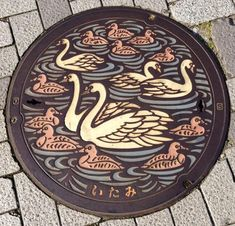 −伊丹市のマンホール− 伊丹市のシンボル、昆陽池のコブハクチョウがデザインされています。 このコブハクチョウは、今や昆陽池から絶滅の危機だそうです ♯マンホール Japan