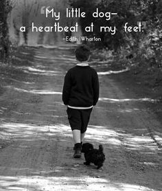 This. This hits spot-on, right in my heart. A little heartbeat, a living thing capable of love and hurt, needing care and attention and giving back so much. I love dogs and this picture seems to explain so much in so little words.
