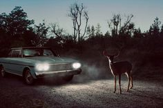 The Fallen Town by Holly Andres #inspiration #photography