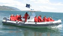 Whale Watching- St Lawrence Charlevoix, St Lawrence, Excursion, Whale Watching, Quebec, Road Trip, Boat, Dinghy, Boats