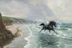 The Black Stallion and the Shapeshifter Black Beauty Movie, Black Stallion Horse, Dancing Animals, Horse Books, Beauty In Art, Spirited Art, Majestic Horse, Horse Drawings, Book Images