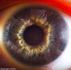 human eye hd
