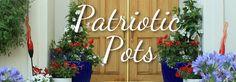 Patriotic Pots / Armstrong Garden Centers