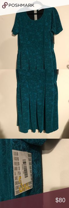 BNWT LuLaRoe 3x Amelia Dress Teal Textured BNWT LuLaRoe 3x Amelia Dress Teal Textured. Amelia dresses have pockets, zippered backs, puff sleeves, and box pleated skirts. Gorgeous textured material and plenty of ways to style with belts, a matching cardigan, and more! PERFECT for all sorts of events - Valentines Day, a wedding shower, or Easter! LuLaRoe Dresses