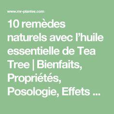 10 remèdes naturels avec l'huile essentielle de Tea Tree | Bienfaits, Propriétés, Posologie, Effets Secondaires