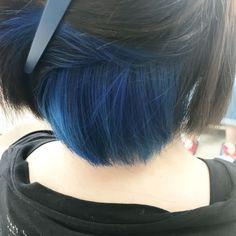 Short Blue Hair, Dyed Hair Blue, Girl Short Hair, Hidden Hair Color, Two Color Hair, Hair Streaks, Hair Highlights, Hair Color Underneath, Peekaboo Hair