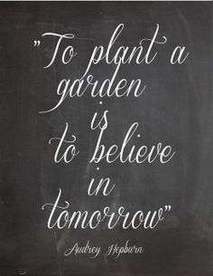 """""""She considers a field and buys it; From her profits she plants a vineyard."""" Prov. 31:16  Plant a garden"""