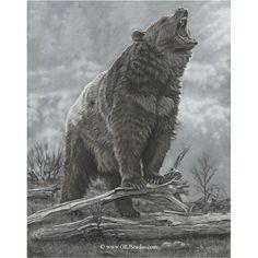 Bear Print | Last Stand | Gary Johnson