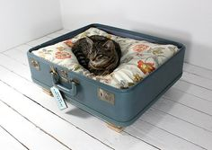 Vintage suitcase pet furniture. Most cats don't even seem care about a cushion, but probably secretly like it... Add feet, maybe some paint or other customization to make it special!
