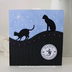the bottom piece of the card was made using that folder, all occasion embossing folder, the cats are stickers from Craft Creations UK. I made the sentiment myself.