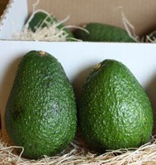 Avocados: Refrigeration halts the ripening process. When anticipating a need for an avocado, you just put the avocados back on the counter to finish ripening. Keeping avocados in a paper bag will speed up the ripening process, just like with other fruits. Storing Fruit, Avocado Storage, How To Store Avocado, Avocado Ice Cream, Green Bean Recipes, Brain Food, Food Hacks, Food Tips, Tips