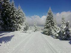 Nejkrásnější místa pro zimní sportovní aktivity   Places to go... The most beautiful winter hiking tours...  #superlifecz #winter #sports #zen #snow #apps #czechrepublic    Zuzana Kocumová - Rege vyjížďka s Radkou