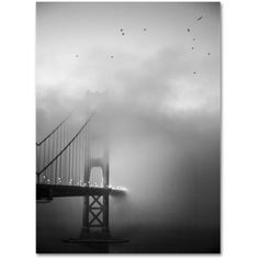 Trademark Fine Art Golden Gate and Birds Canvas Art by Moises Levy, Size: 24 x 32, Gray