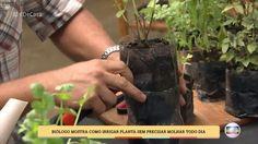 Se for deixar o vaso em local exposto a chuva, faça pequenos furos na área de plantio