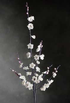 "Want these. Great site! Vintage White Cherry Blossoms 30"" Branches $5.99 each / 3 for $5 each"